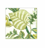 Beach Party Decorations Green Beverage Napkins 20 Count