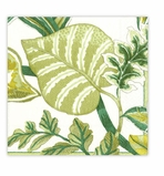 Beach Party Decorations Green Dinner Napkins 20 Count