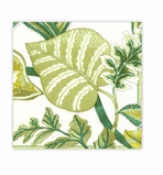 Beach Party Decorations Green Lunch Napkins 20 Count