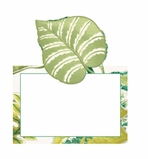 Beach Party Decorations Green Placecards 8 Count