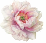 Round Placemats White Peony