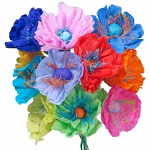 Mexican Paper Poppies - Set of 12