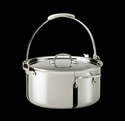 All Clad Stainless Steel 8 Quart Pouring Stockpot with Lid