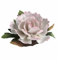 Andrea by Sadek Pale Pink Single Peony Porcelain Flower Figurine