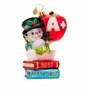 Christopher Radko Snow Teacher Like You Ornament