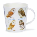Dunoon Cairngorm Birds and Eggs Owls Mug