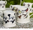 Emma Bridgewater Pottery British Birds Collection