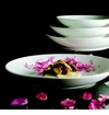 Fortessa Superwhite China Dinnerware - 75% Off