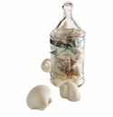 Gianna Rose Sea Shell Soaps in Standard Apothecary Jar (9) Soaps