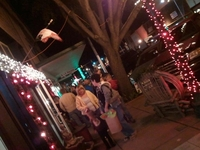 Holiday Stroll, 11/22/14