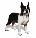 Intrada Italy Boston Terrier Black Statue
