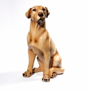 Intrada Italy Labrador Retriever Dog Statue