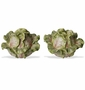 Kaldun & Bogle French Garden Cabbage Salt & Pepper