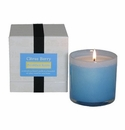 LAFCO Breakfast Room Candle - Citrus Berry