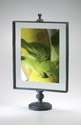 Large Floating Photo Frame by Cyan Design
