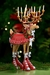 Patience Brewster Krinkles Dash Away Reindeer Donna Figure