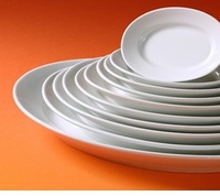 Pillivuyt French Porcelain Platters, Trays & Servers