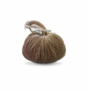 "Plush Pumpkin 6"" Decorative Pumpkin - Stone"