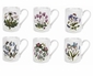 Portmeirion Botanic Garden 10 Ounce Tankard Coffee Mugs (Assorted Set of 6)