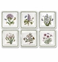 Portmeirion Botanic Garden Square Salad Plates (Assorted Set of 6)