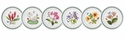 Portmeirion Exotic Botanic Garden Set of 6 Assorted Dinner Plates