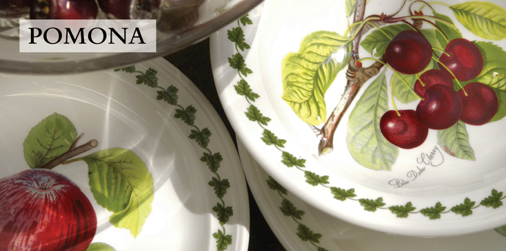 Shop Portmeirion Pomona Fruit Dishes Amp Dinnerware Free