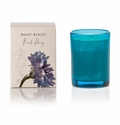 Rosy Rings Botanica Glass Candle Beach Daisy