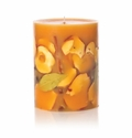 """Rosy Rings Spicy Apple 5"""" Tall Round Botanical Candle"""