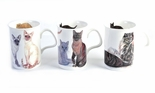 Roy Kirkham Cats Galore Bone China Mugs - Set of 3