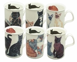 Roy Kirkham Cats Galore Bone China Mugs - Set of 6