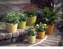 "Skyros Designs Garden Collection 9.25"" Planter Lime Green"