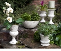 Skyros Designs Planter White