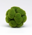 Small Moss Sphere by Cyan Design