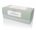 Tea Forte Presentation Box Green Mango Peach