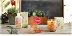 Thymes Agave Nectar Fragrance Collection