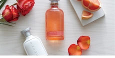 Thymes Fragrance Studio Rosewood Citron Collection