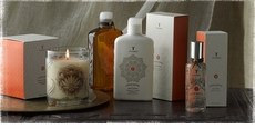 Thymes Lotus Santal Collection