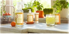 Thymes Mandarin Coriander Fragrance Collection