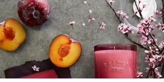 Thymes Mirabelle Plum Collection