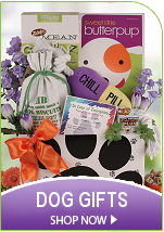 Upscale Dog Gift Baskets