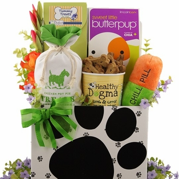 Sick As A Dog Gift Basket