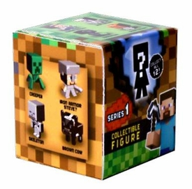 Minecraft Mattel Mystery Mini Figure Single Pack [1 Random Mini Figure] Pre-Order ships October