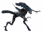 NECA Xenomorph Queen! WOW! Finally!