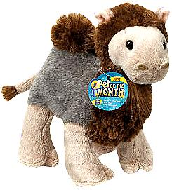 Webkinz Plush Curly Camel Pre-Order ships October