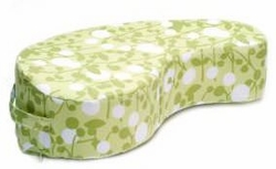 JJ Cole Collections Paisley Nursing Pillow