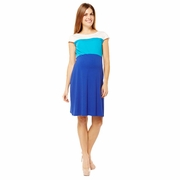 Jules And Jim Color Block Maternity Dress
