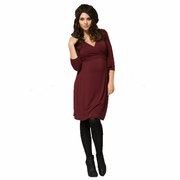 Ripe Ballet Maternity And Nursing Wrap Dress