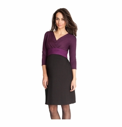 Seraphine Adelaide Maternity Nursing Color Block Dress