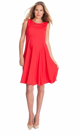 Seraphine Evie Sleeveless Woven A Line Maternity Dress