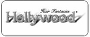 Hollywood & Zury Lace Front Wigs